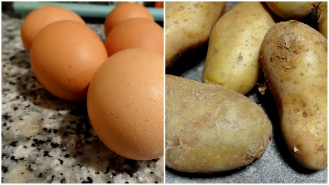 1-2013-07-05 Tortilla y Gazpacho2