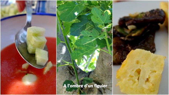 1-2013-07-05 tortilla y gazpacho II