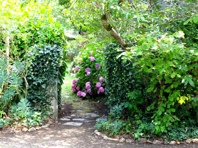 1-Jardin st denis 003