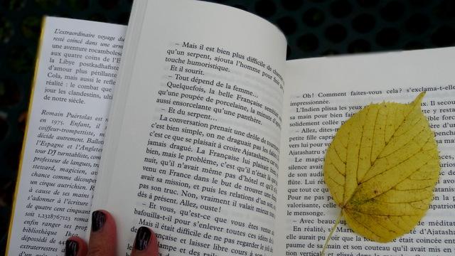 1-Feuilles d'automne 014