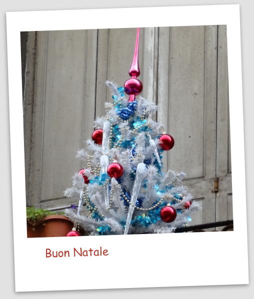 1-BDX Noël 035
