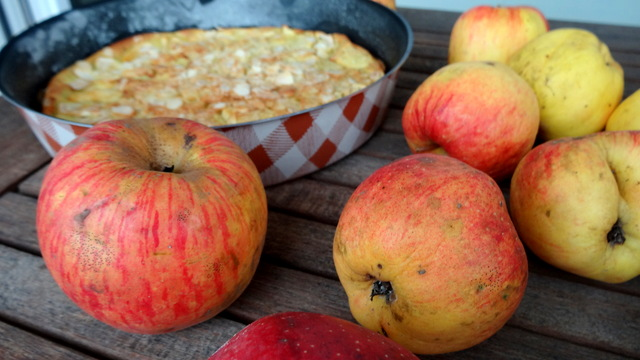 1-Pommes 048